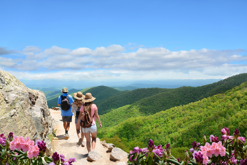 Asheville Memorial Weekend Ideas For The Whole Family